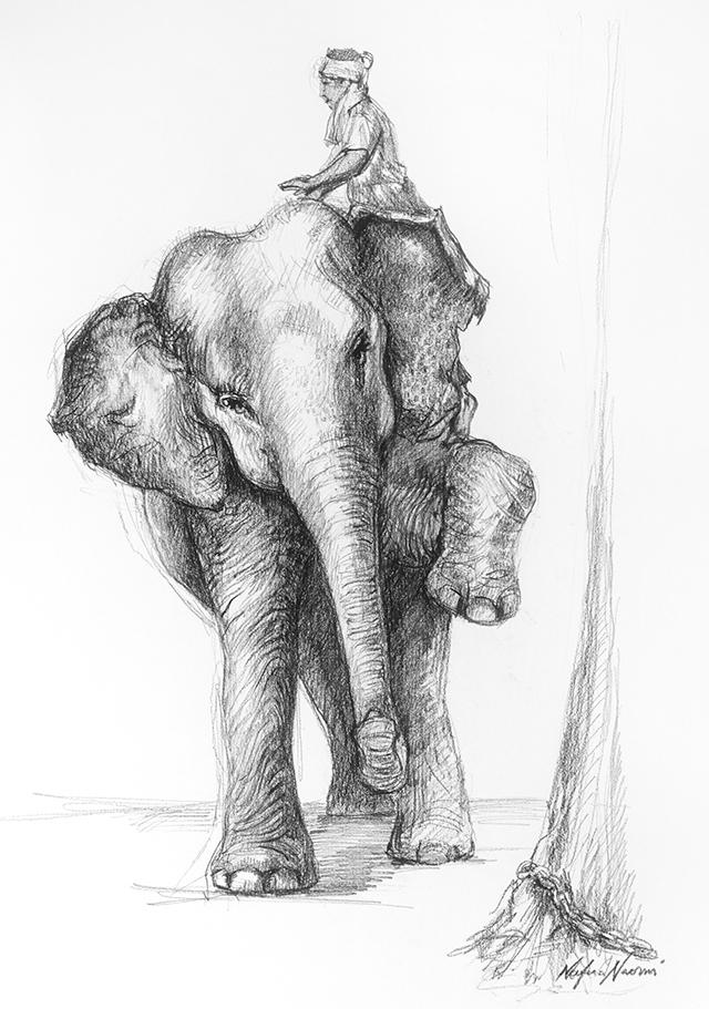nafissa-elephant-12.jpg