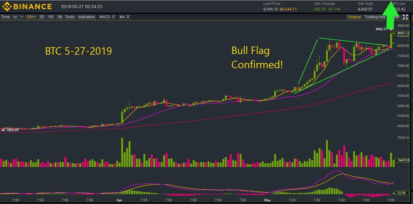 BTC 5-27-2019 Bull Flag.png