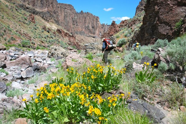 A hiker traverses the West Little Owyhee River Canyon.   Photo: Tim Neville, courtesy of ONDA