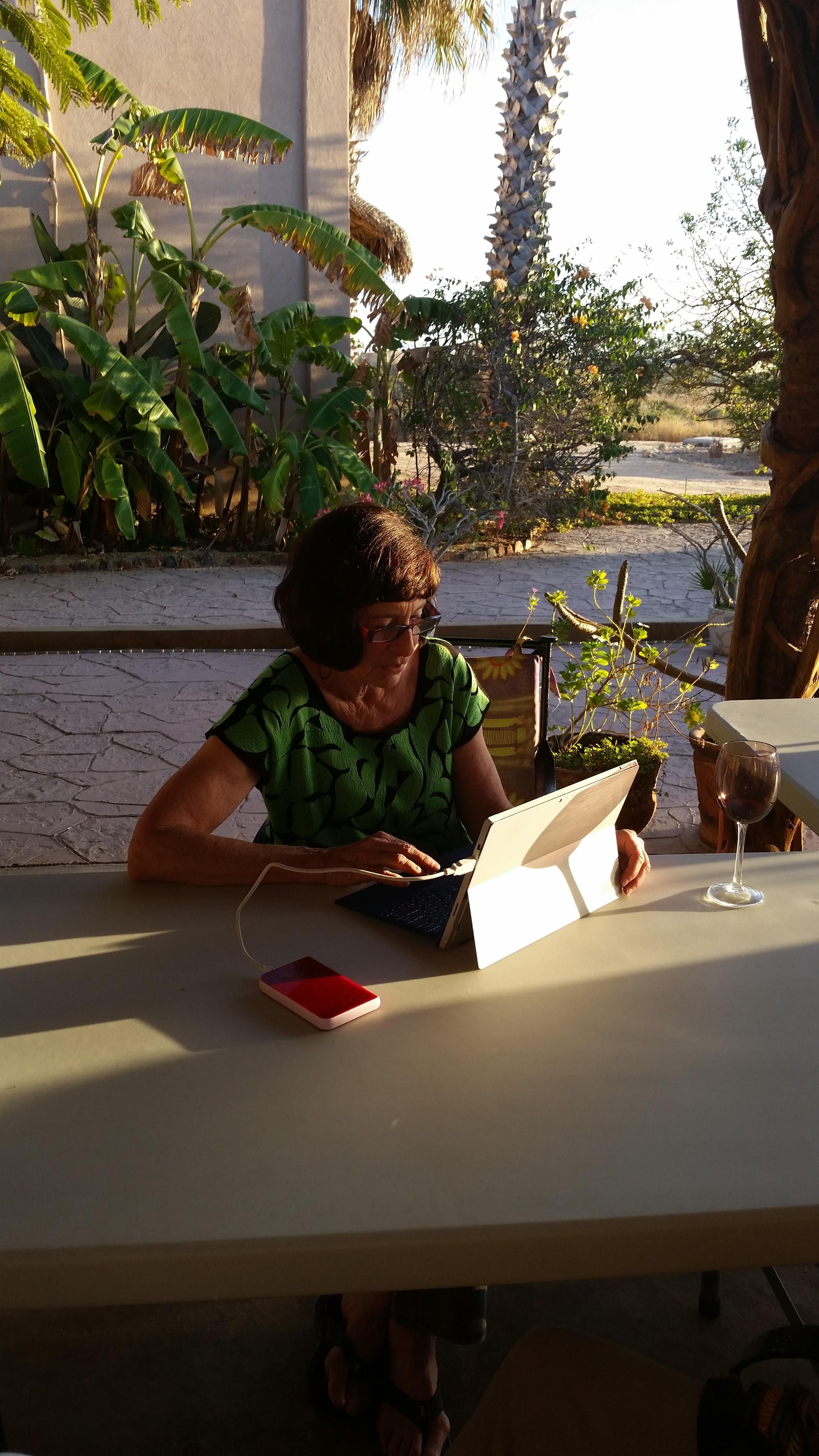 Julie working on her manuscript