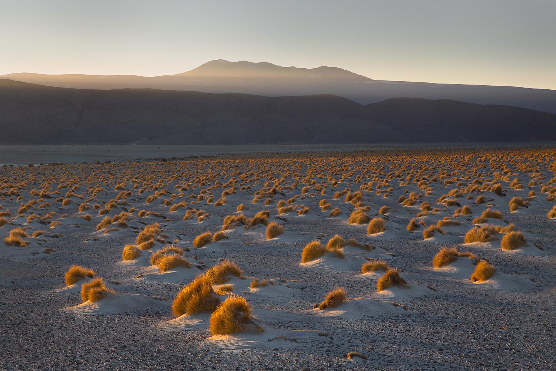 Feron_Samuel_Atacama06.jpg