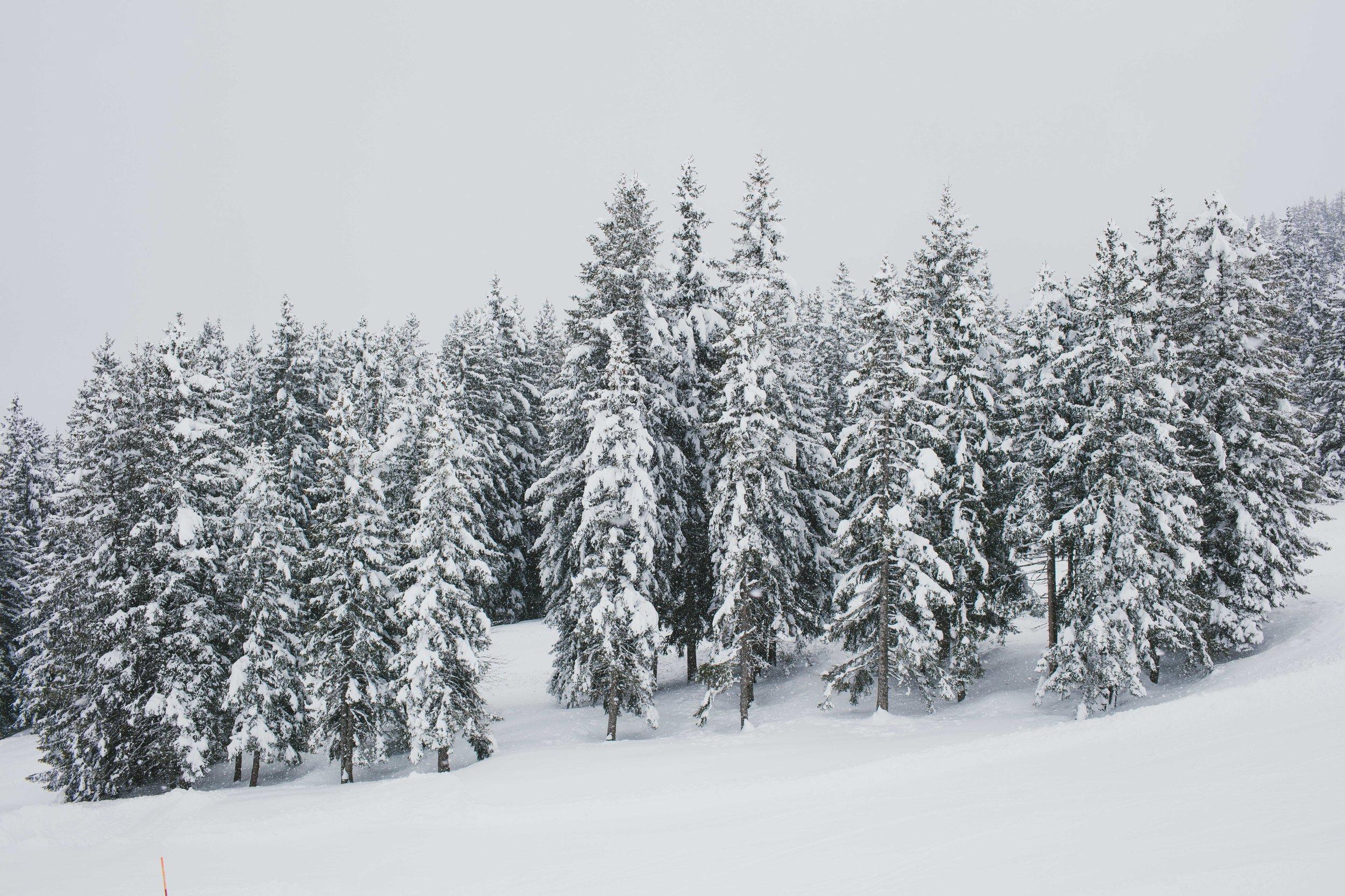 Switzerland-21.jpg