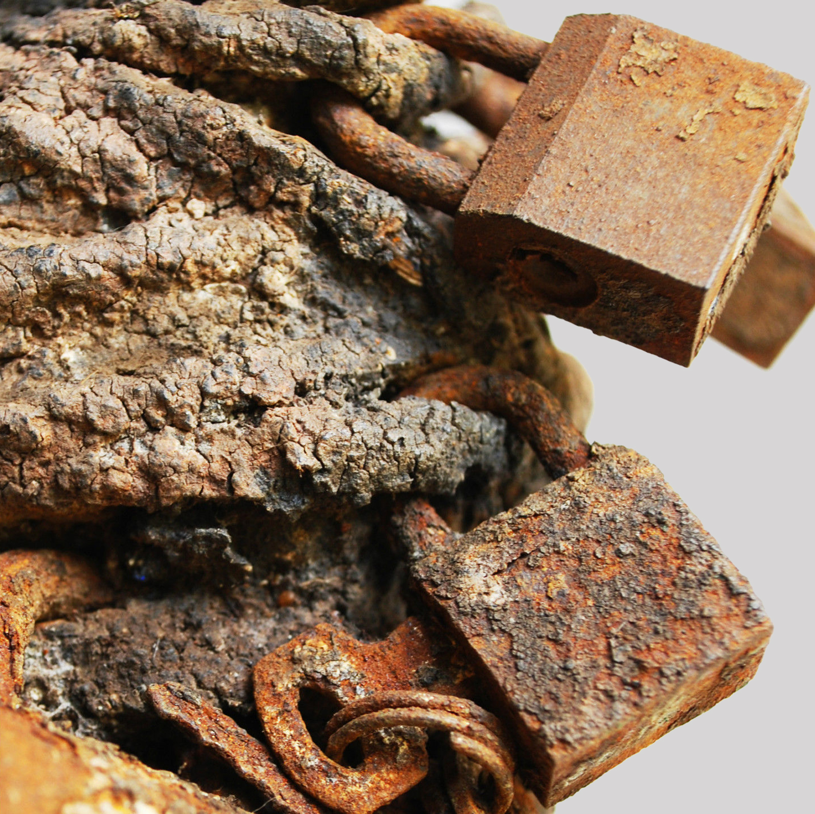 rust2.jpg
