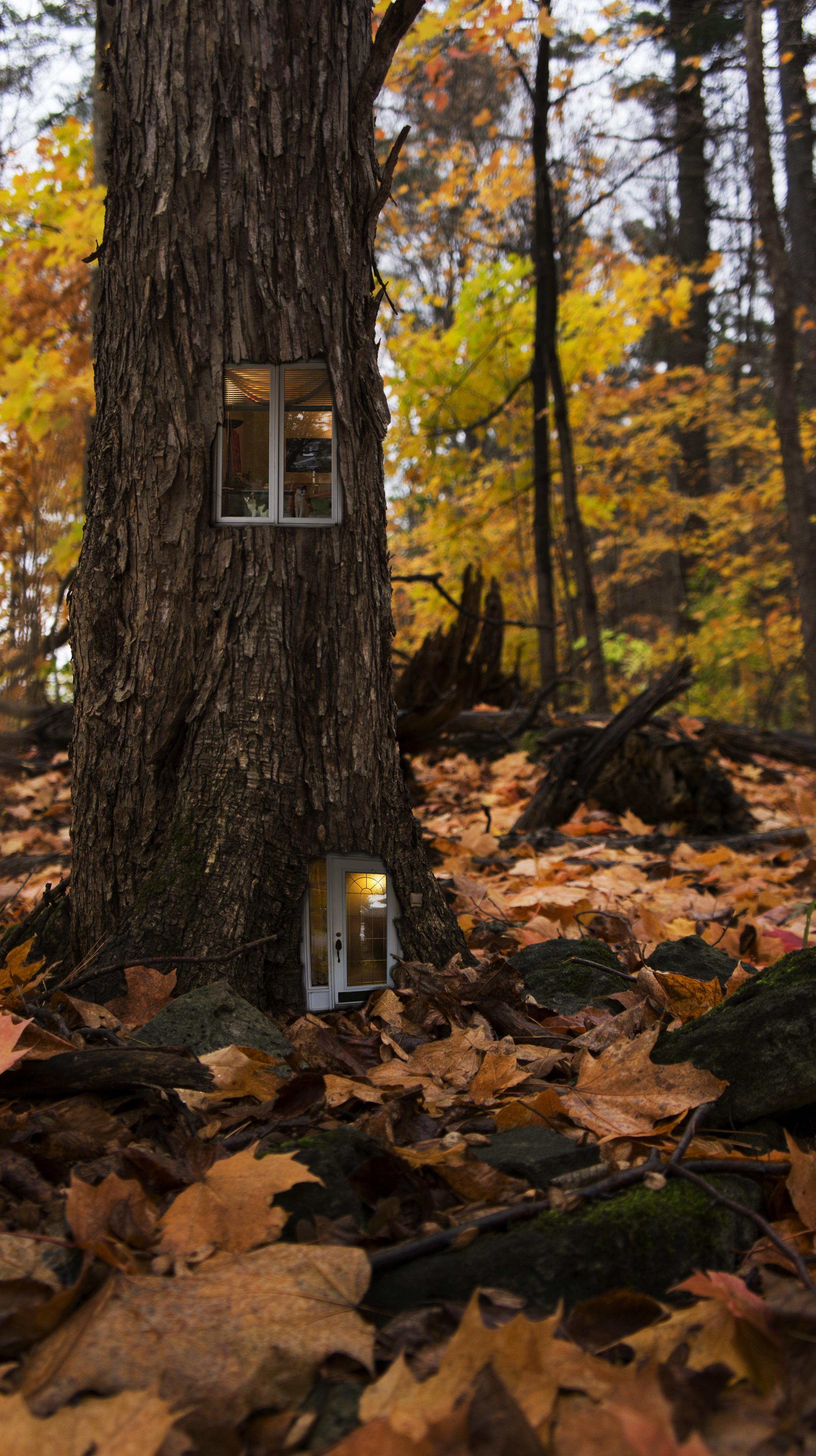 a respectable home.jpg