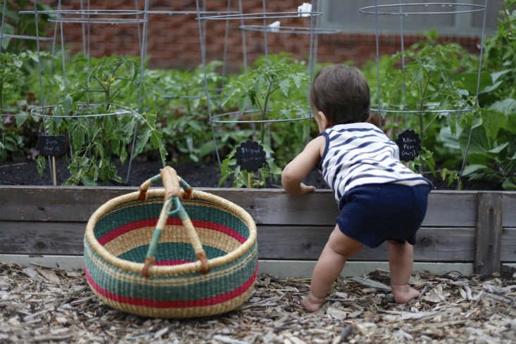 "Let go of your expectations. Kids want to ""help,"" and that means plants will get uprooted, herbs over-watered, produce picked before its time, and pots knocked over, says Chitnis. All of which is a good thing. ""By letting kids help, and giving them the space to get messy and make mistakes, you will nurture their love of gardening,"" she says."