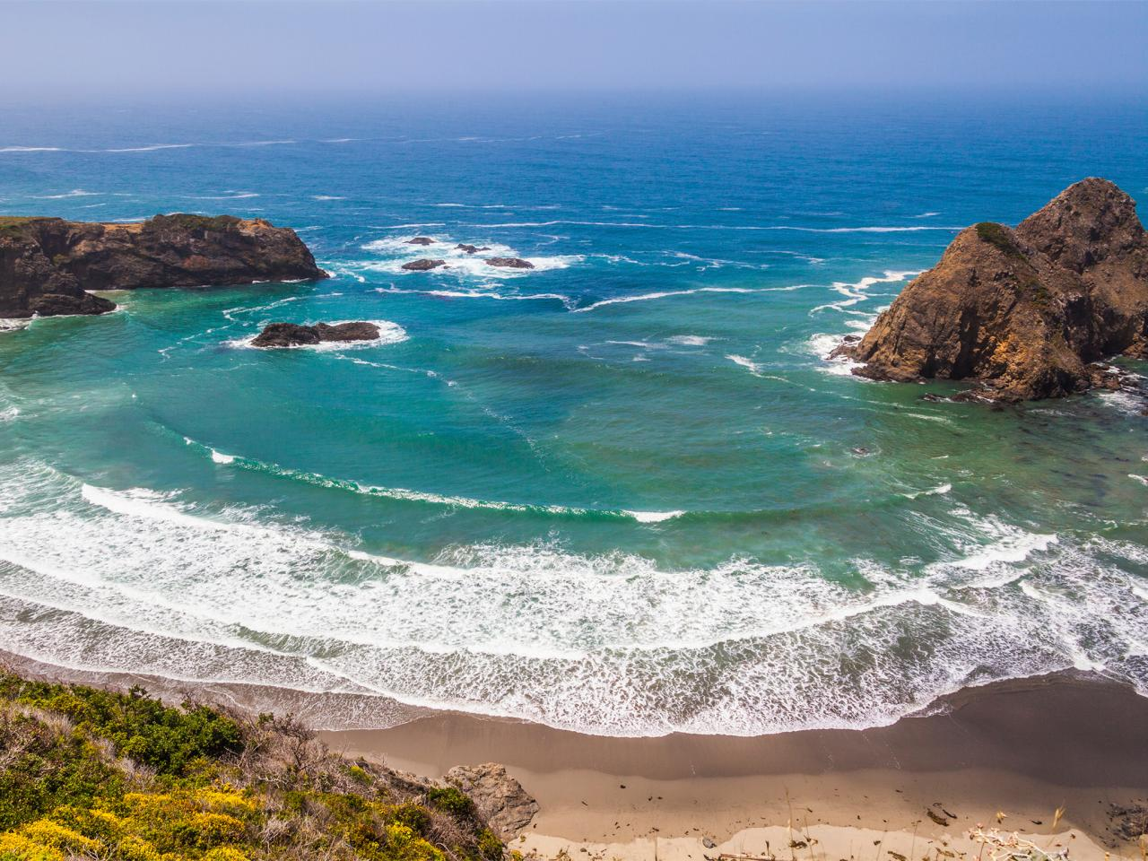 Long-Beach--California--Ocean--Palm-Trees_art.jpg
