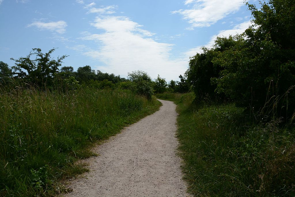 https://upload.wikimedia.org/wikipedia/commons/5/51/Vattenriket_Kristianstad_Path.jpg