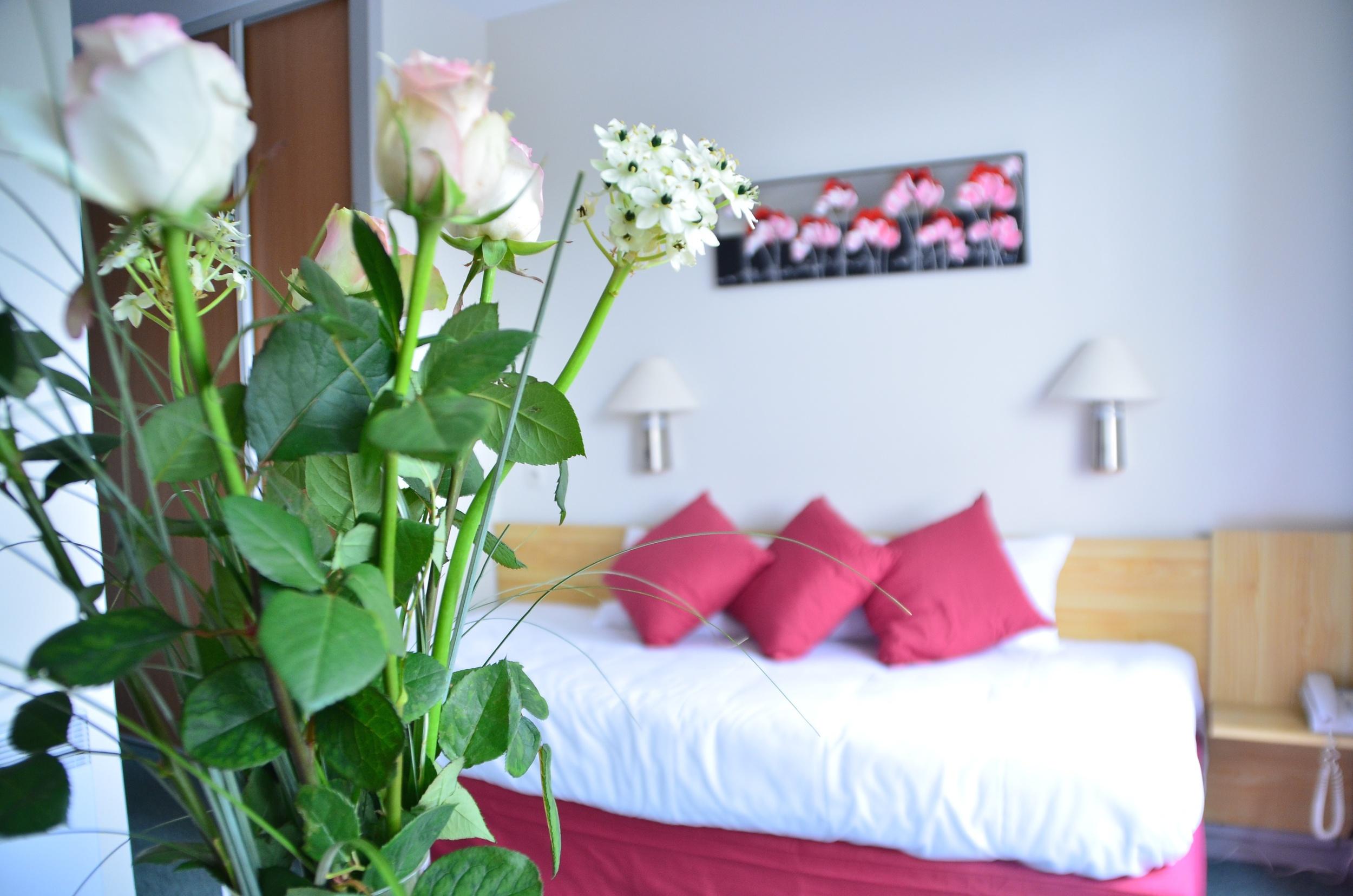 Chambre Dax Hôtel
