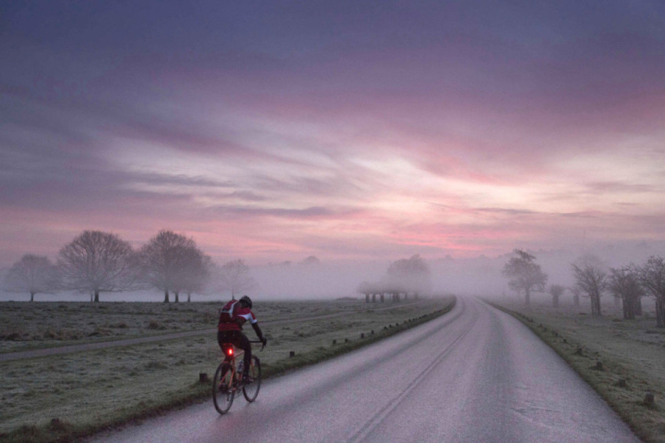 Credit photo to Richmond Park Roulers