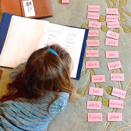 Disruptive Education Video Image.jpg