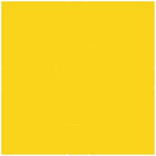 Icon Facebook copia.png