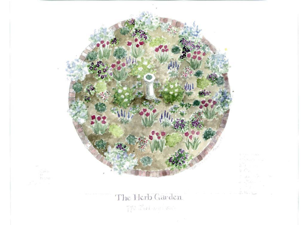 TheHerbGarden-Gardens In Progress