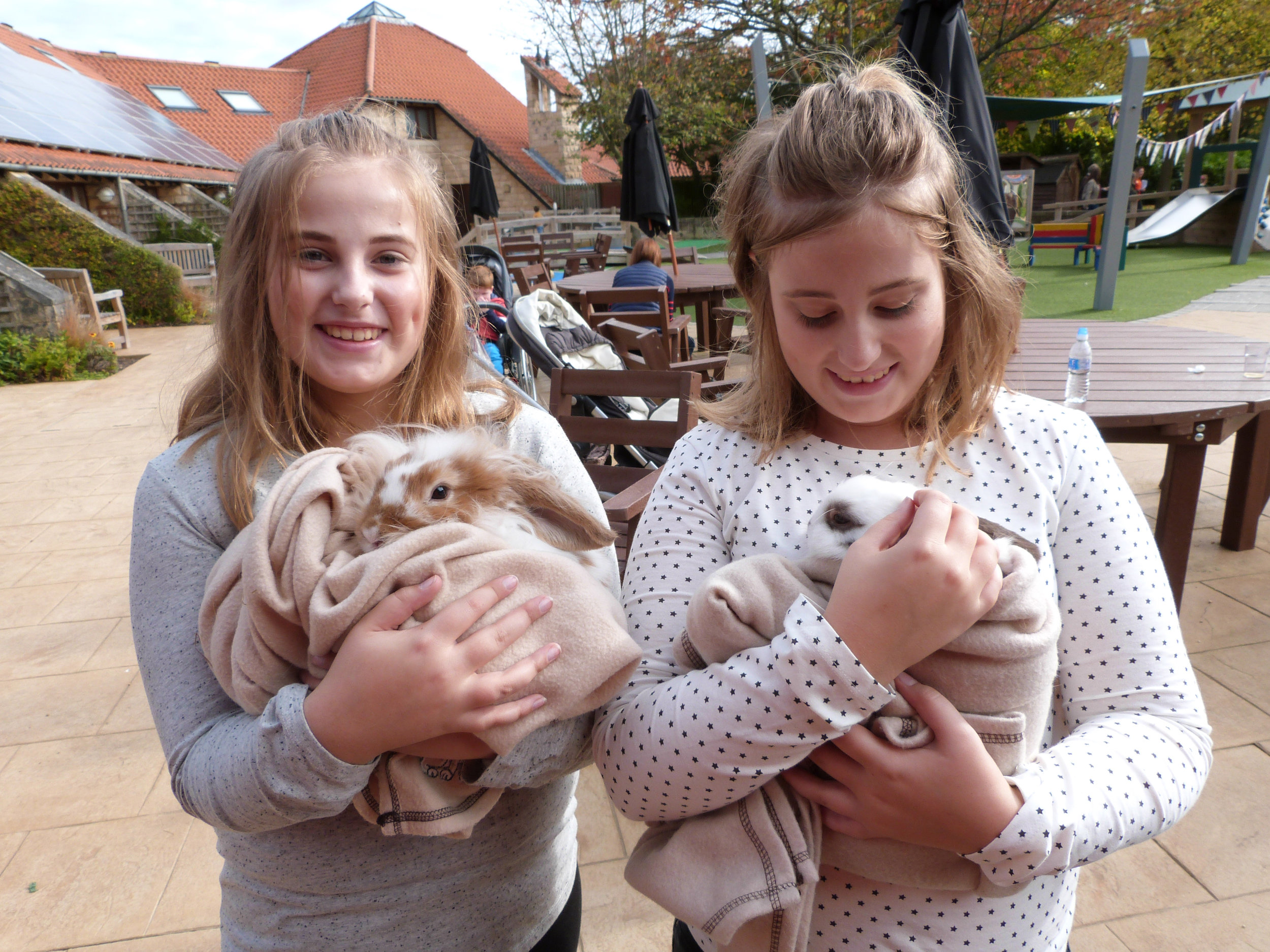 Visitors cuddle rabbits at last year's Martin House Open Day.