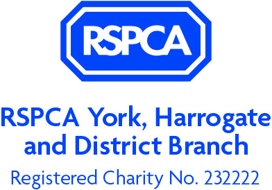 RSPCA_logo (York Harrogate and District Branch_Stacked) (002) NS.jpg