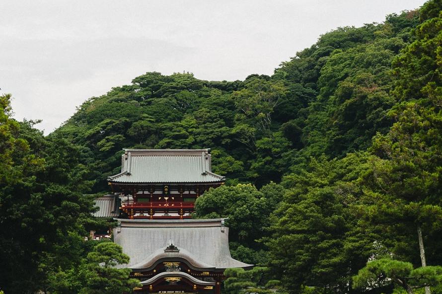 tokyo-temple-forest.jpg