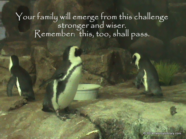 FamilyChallenge.jpg