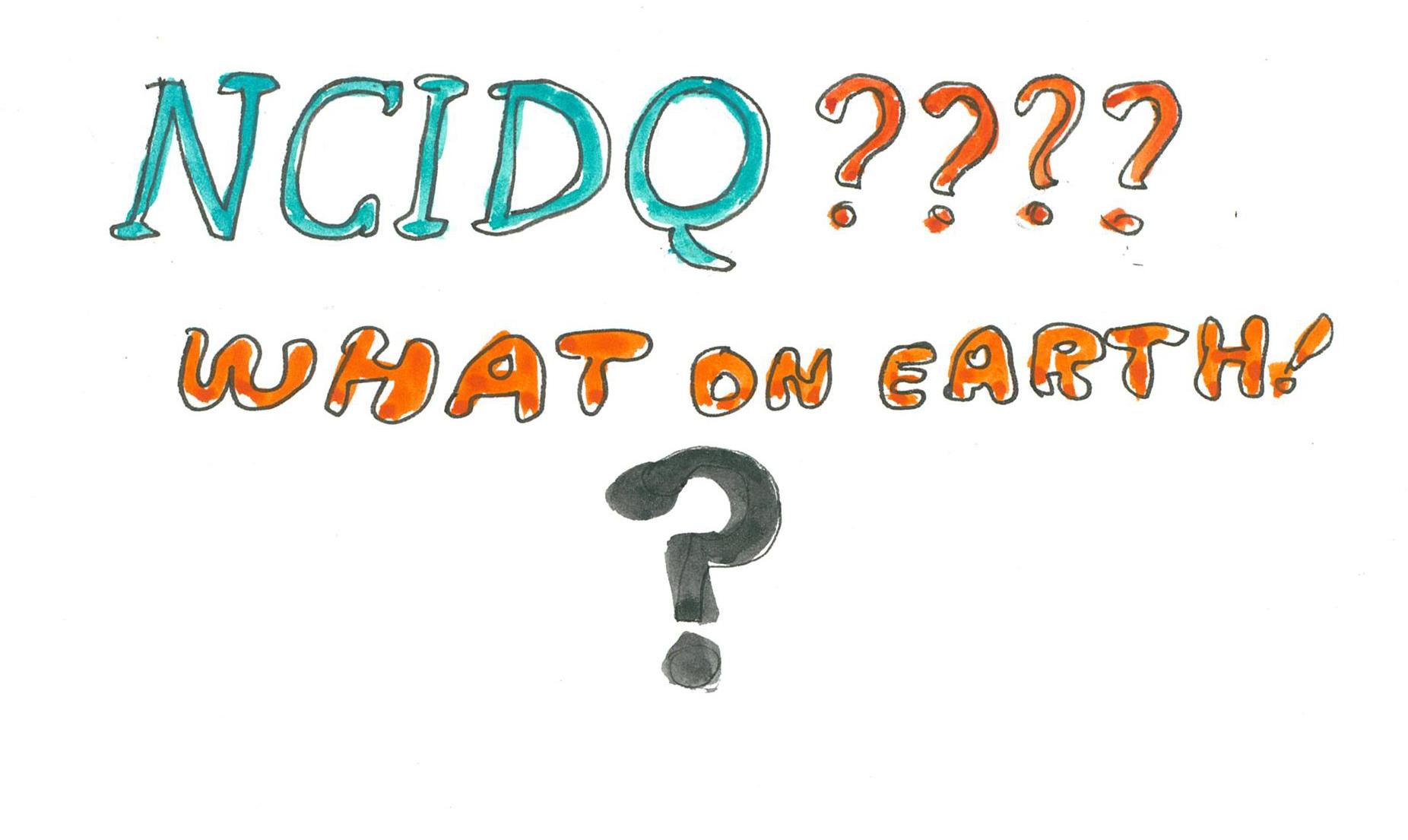 What is NCIDQ?