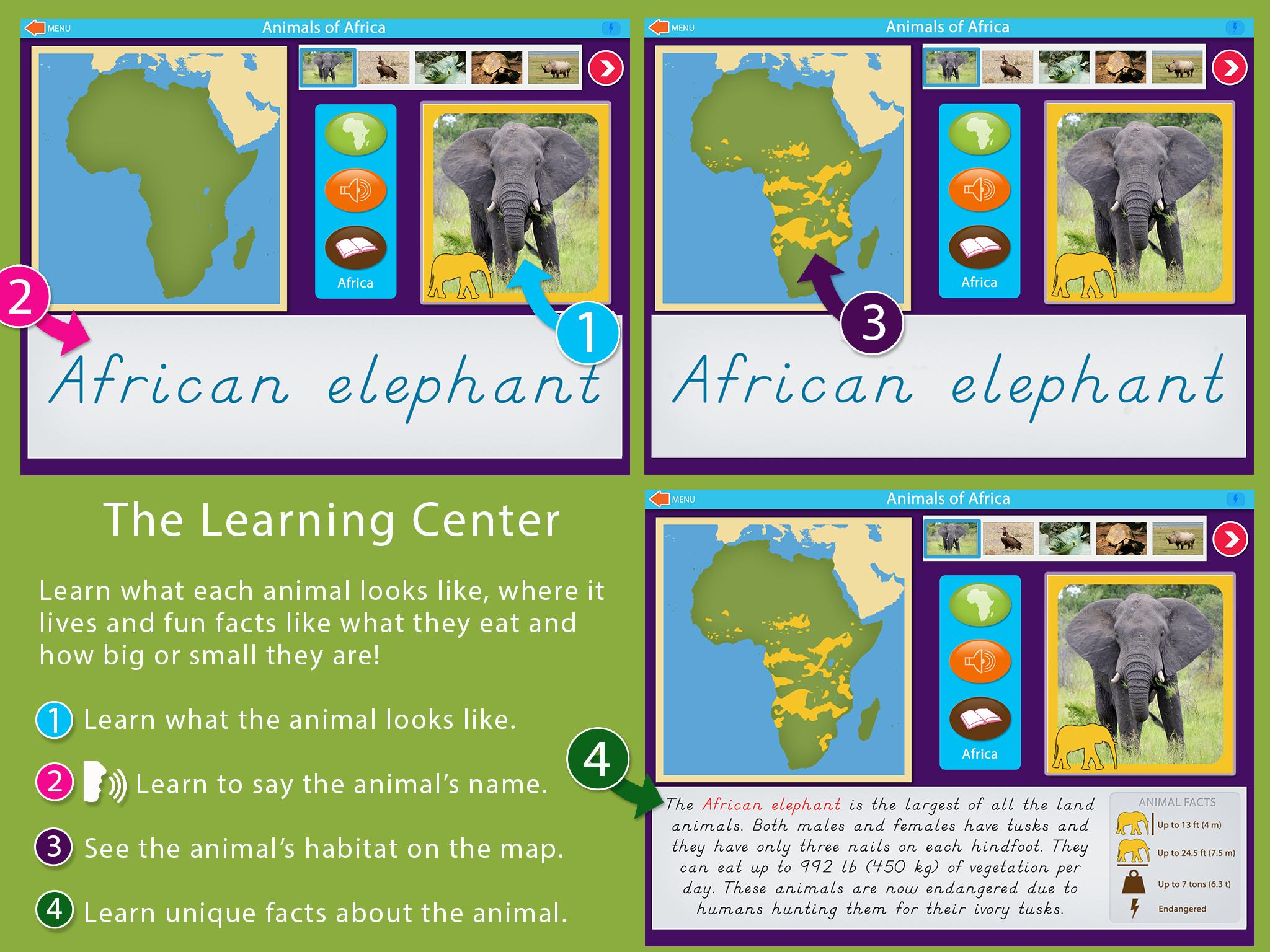 Animals_Of_Africa_Montessori_sc1.png