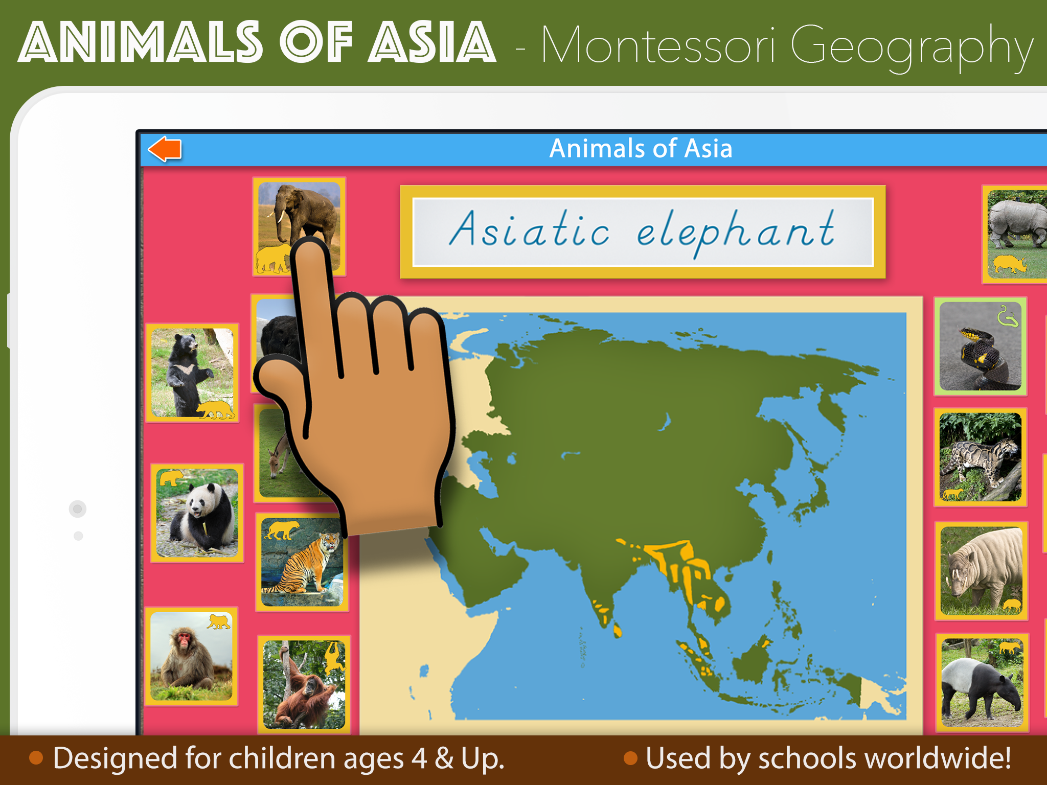 AnimalsAsiaSC1-reg.png