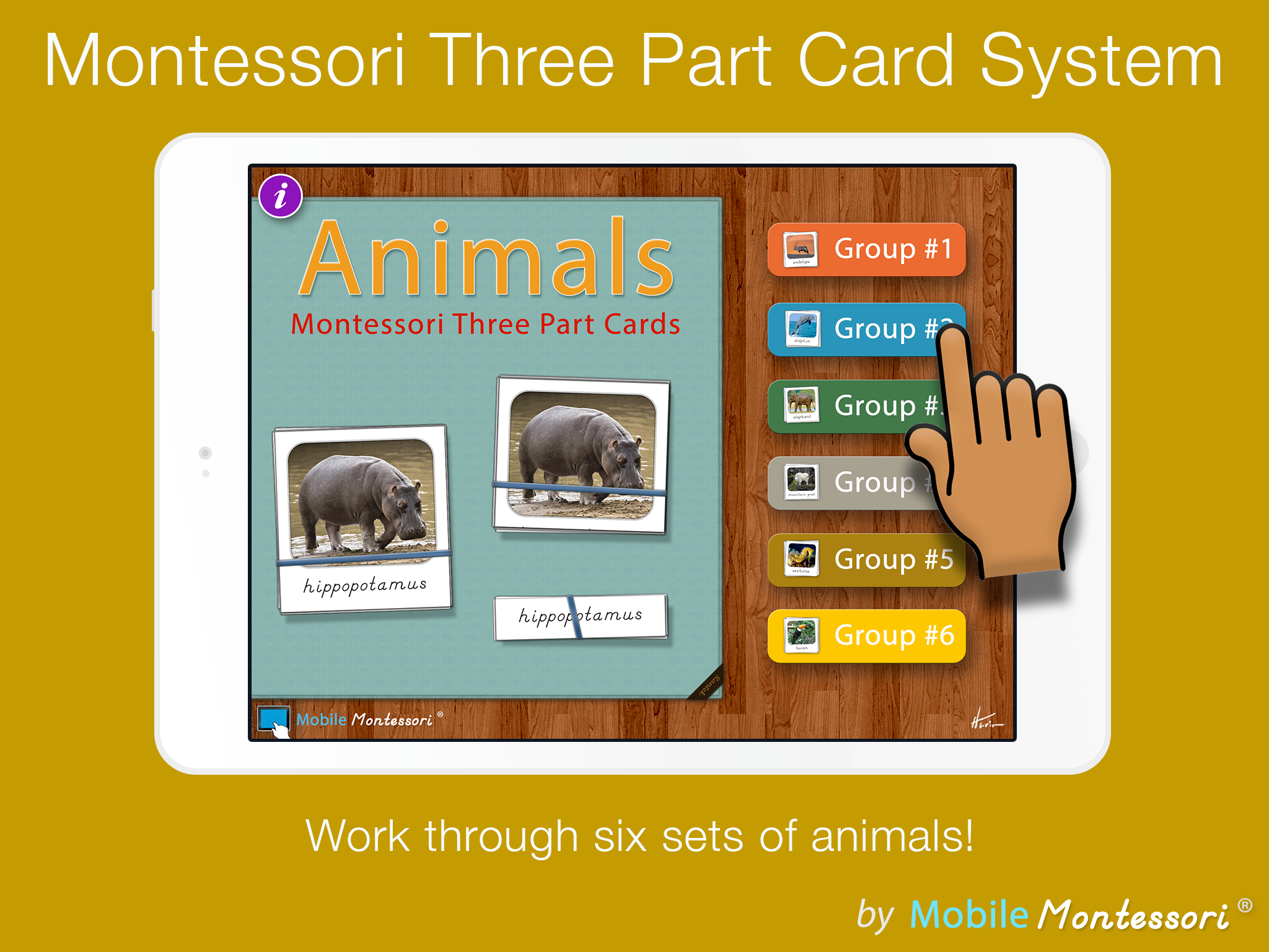 AnimalsSC5-reg.png