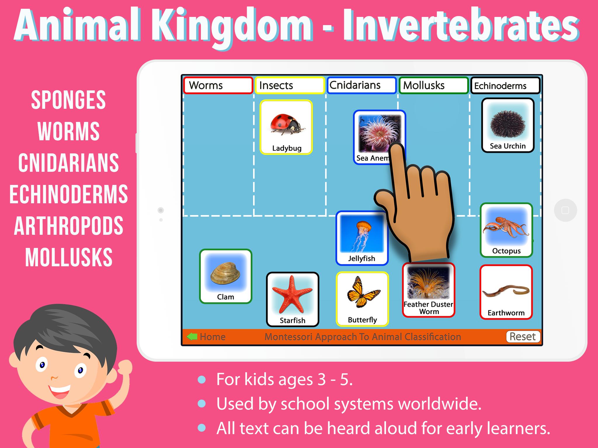 Kingdom-Inverts_SC1-ipadreg.png