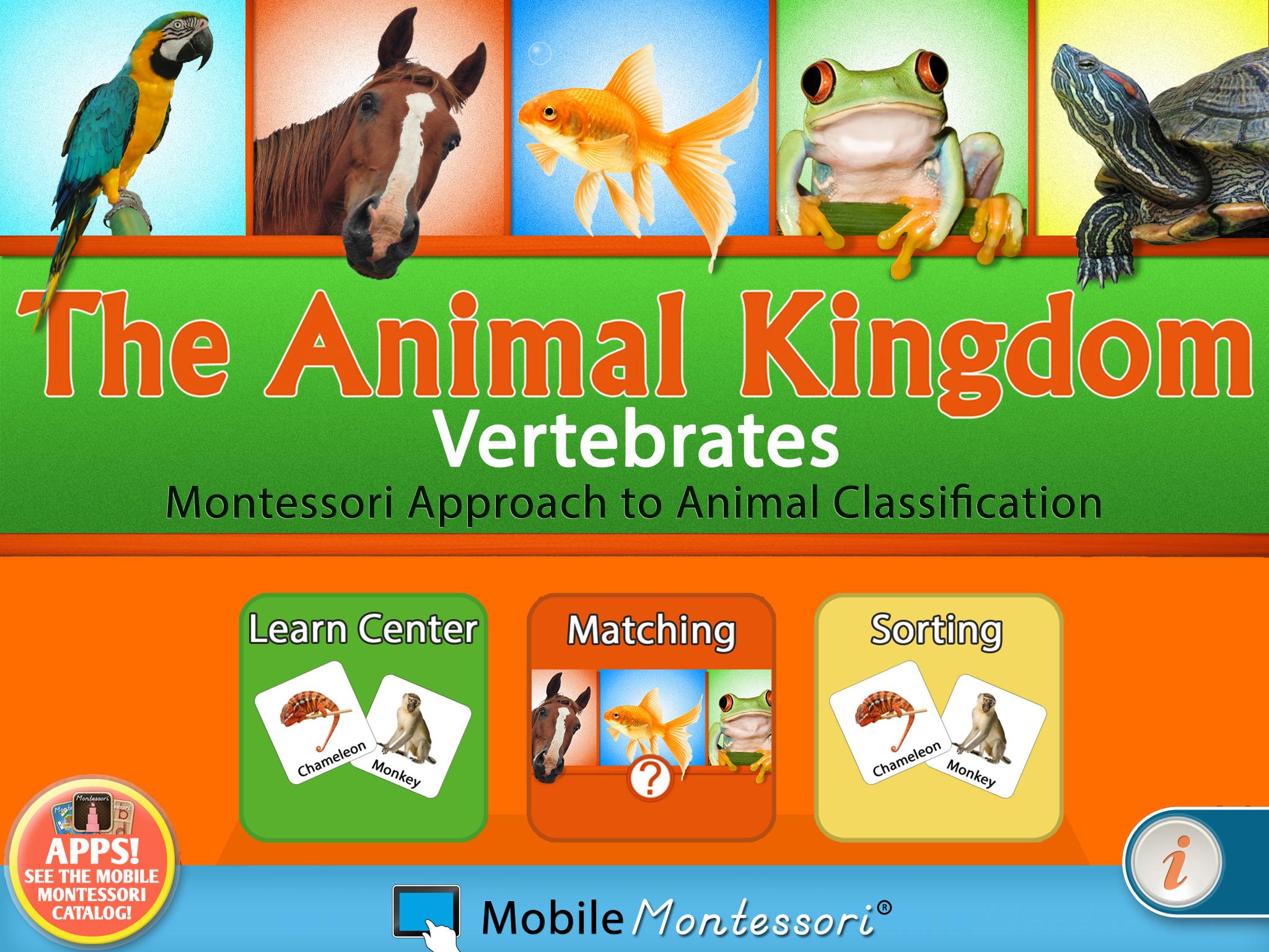 KingdomVertiPad-SC8-reg.png