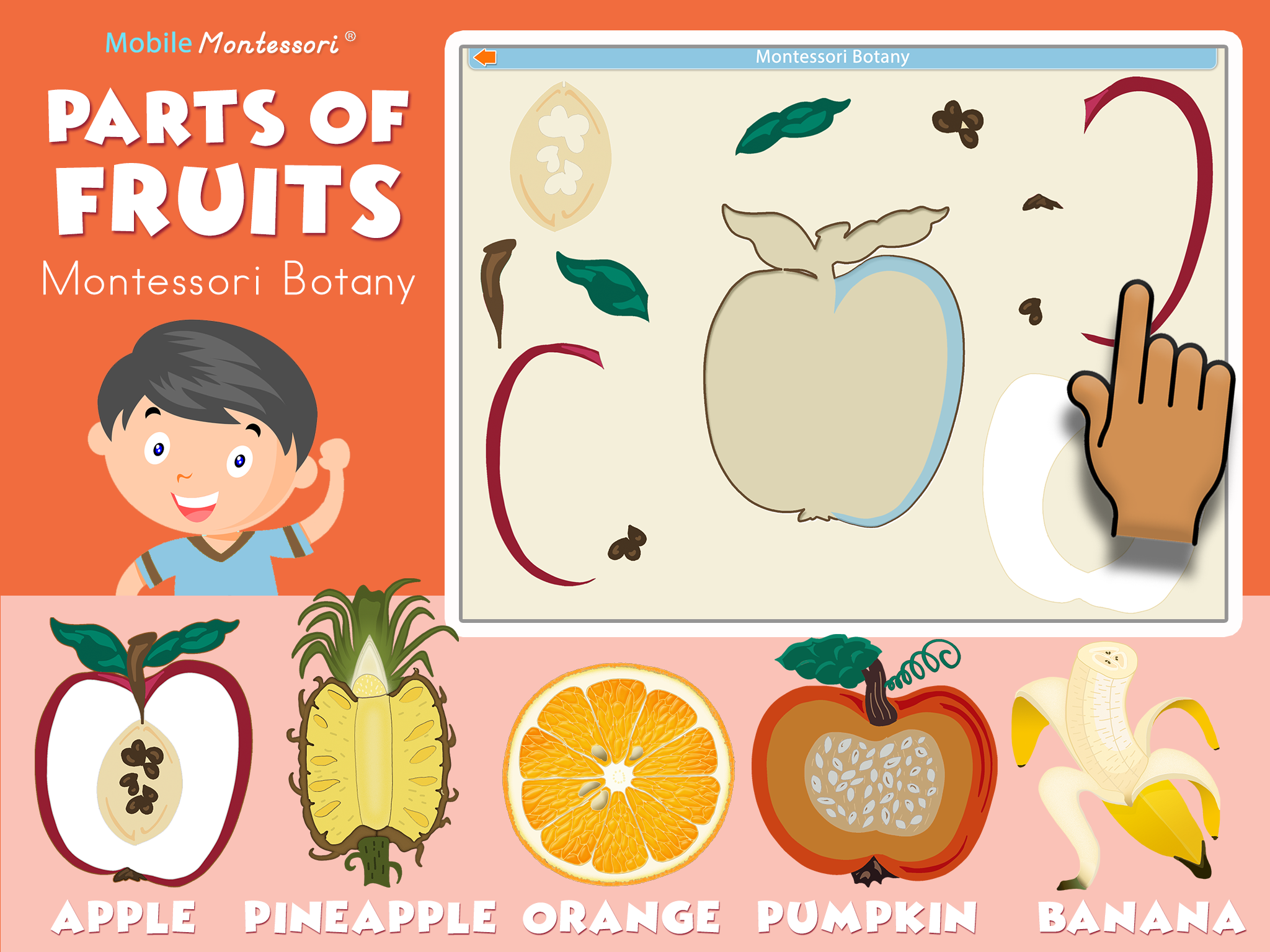 Fruits-SC1-ipad-reg.png