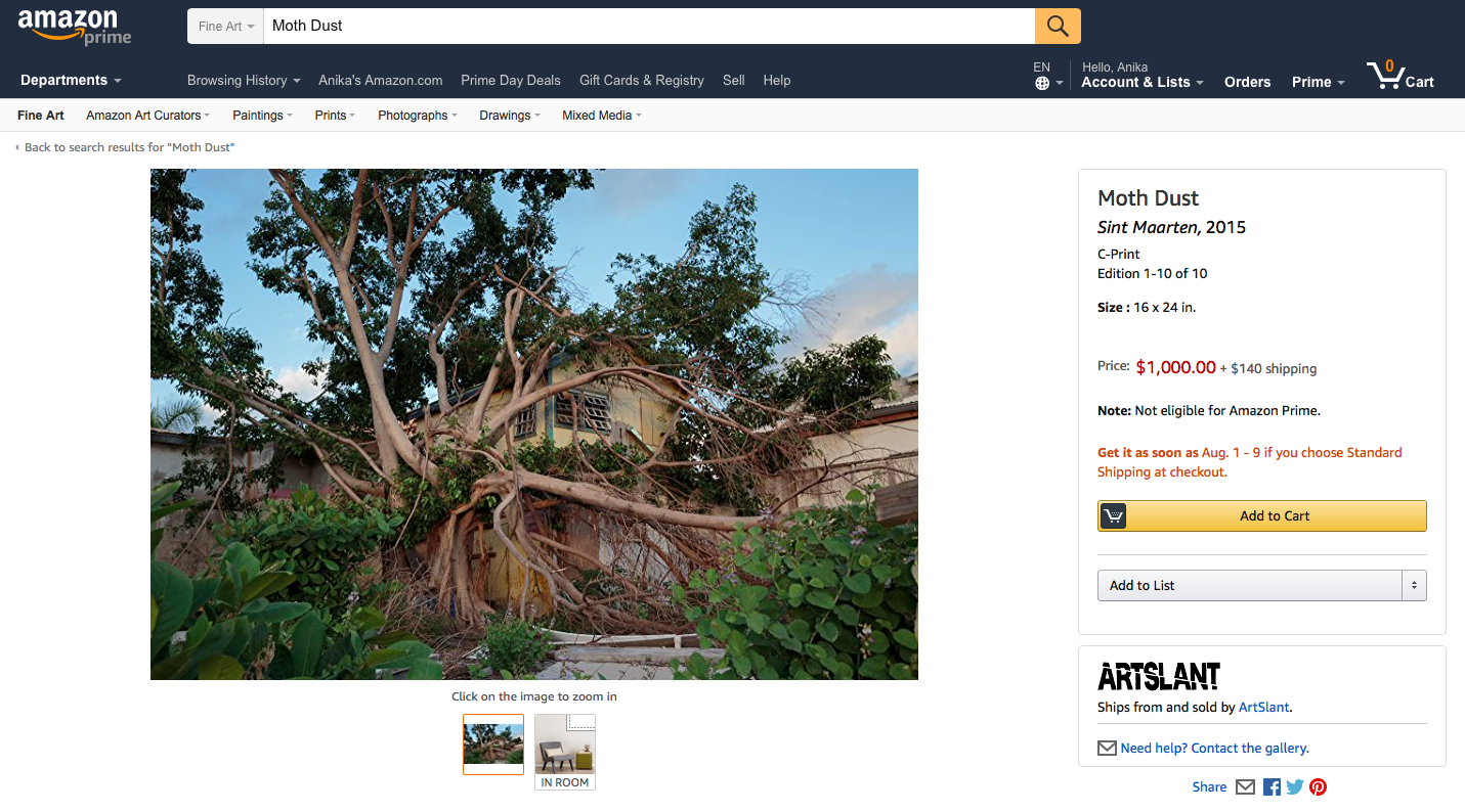 A screenshot of a photograph available through Amazon Art.