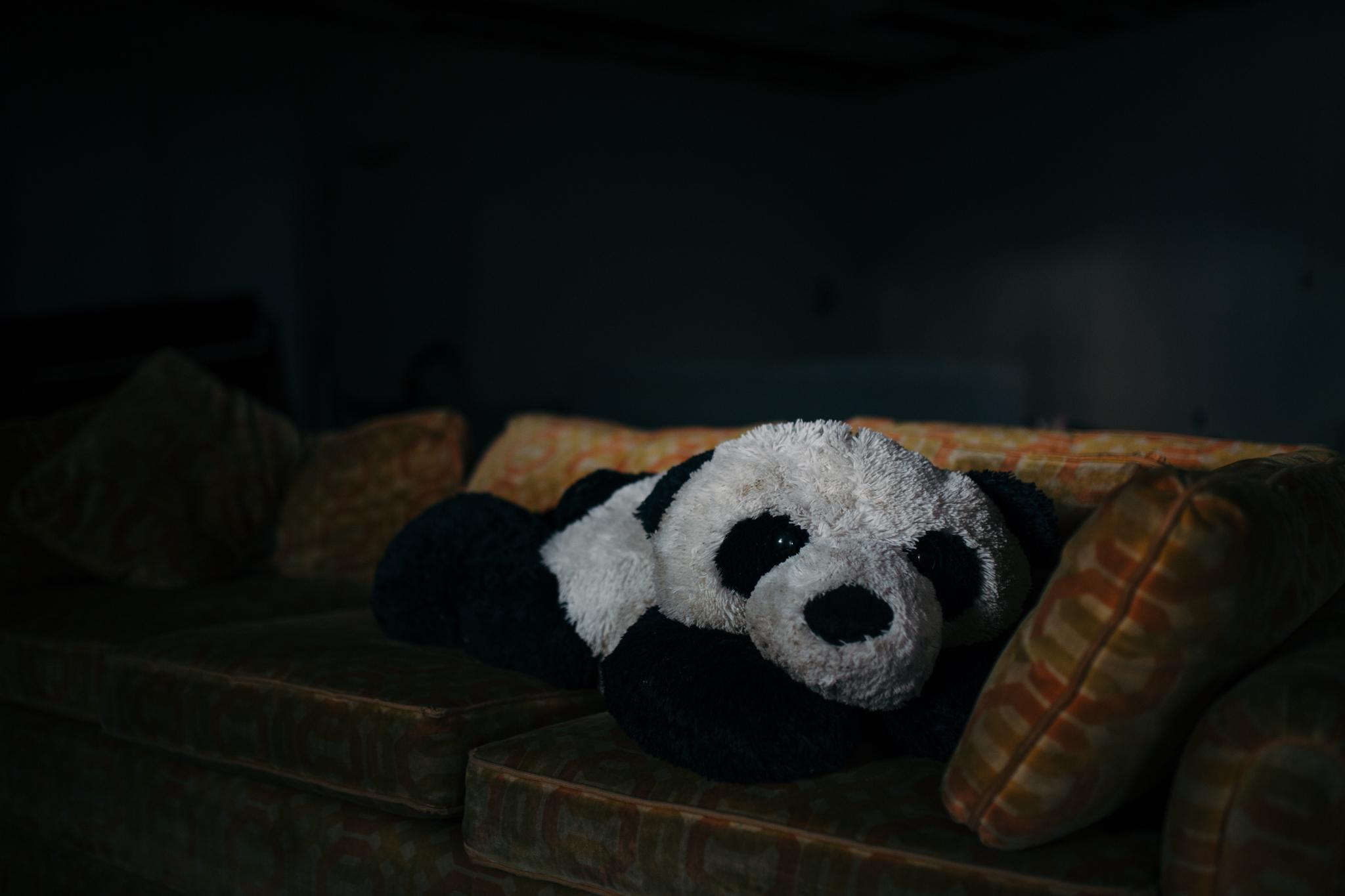 PANDA-websize-3.jpg