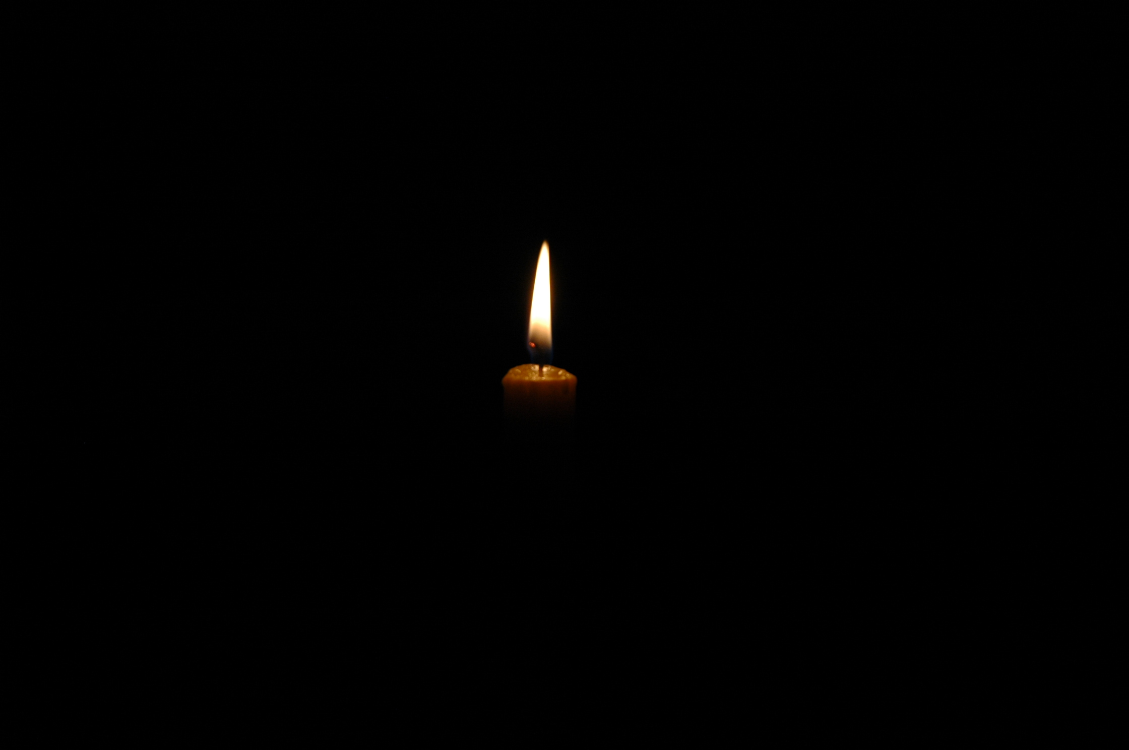 A Light in the Darkness.jpg