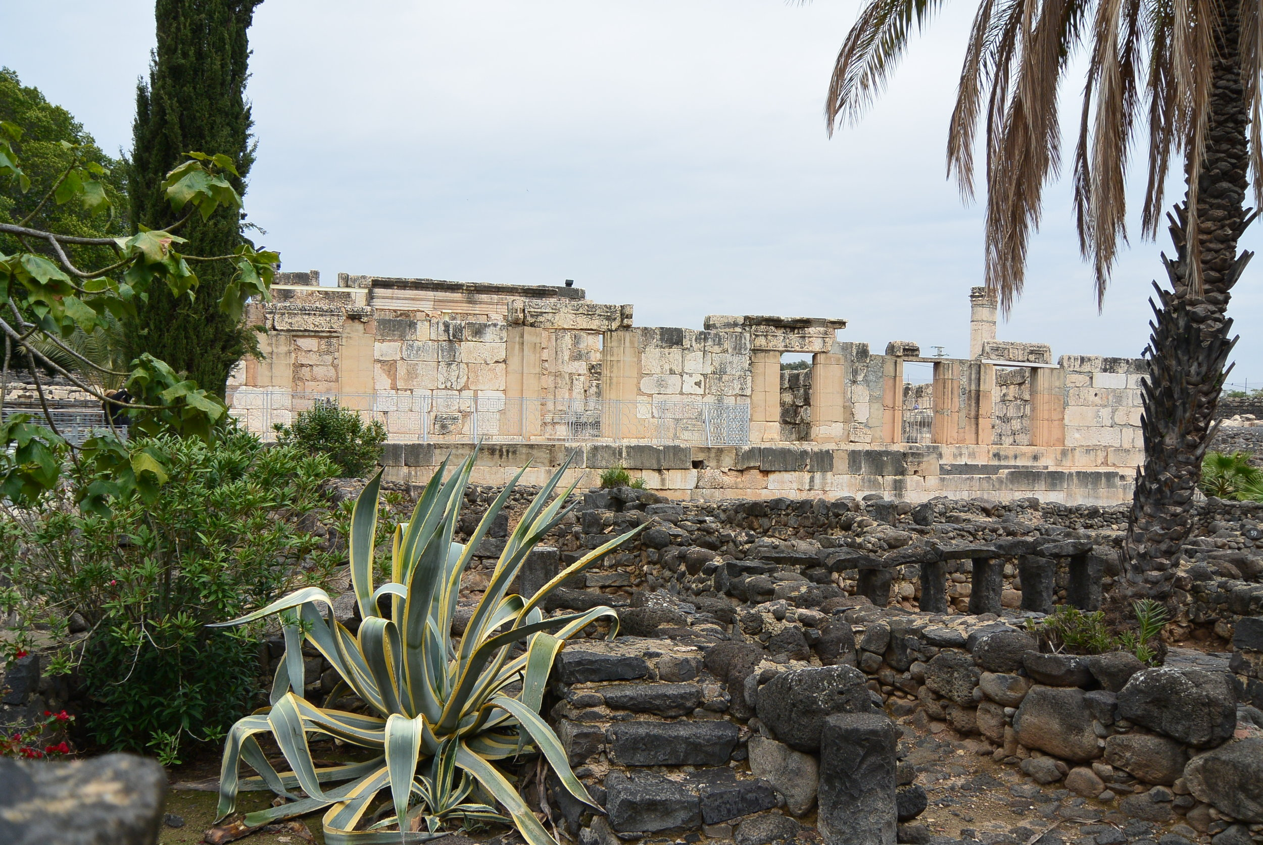 Ruins of the Synagogue at Capernaum