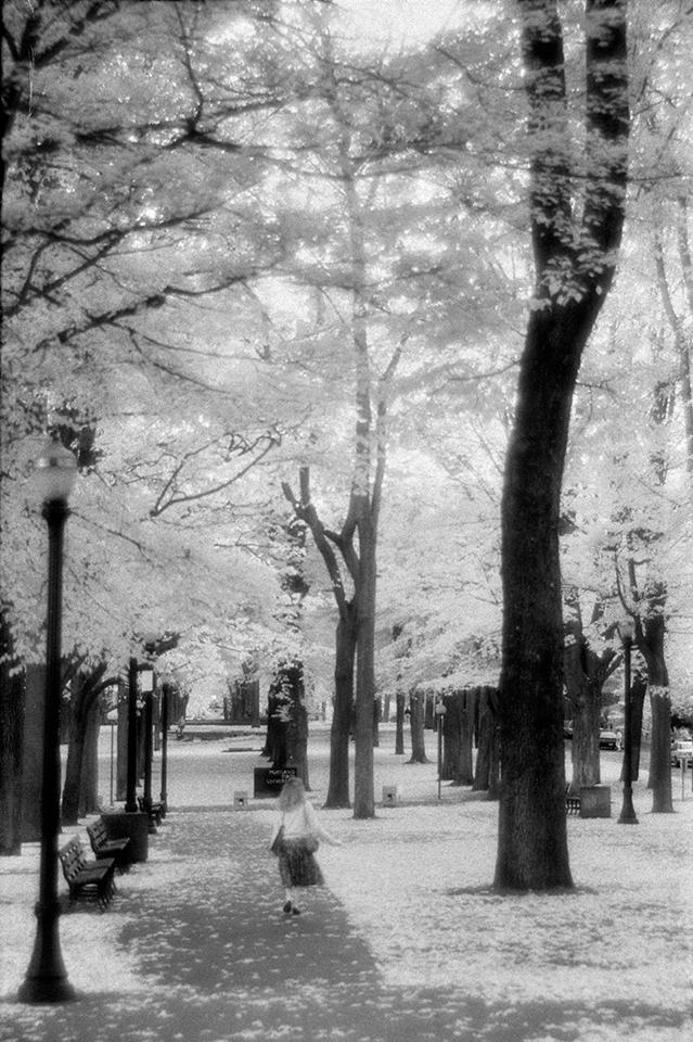 Alone in the park, Portland, Oregon