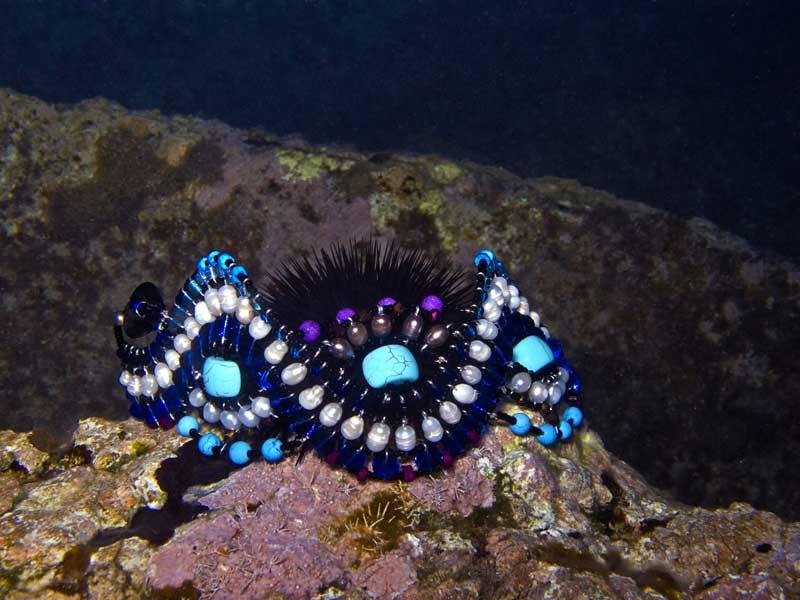 Medusa-Blue-BR4-mj-4691.jpg
