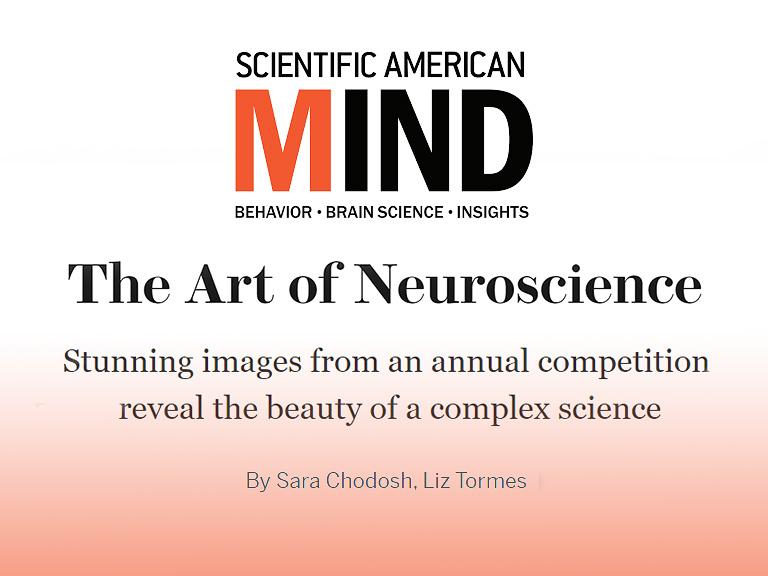 Scientific American - MIND; November 2016
