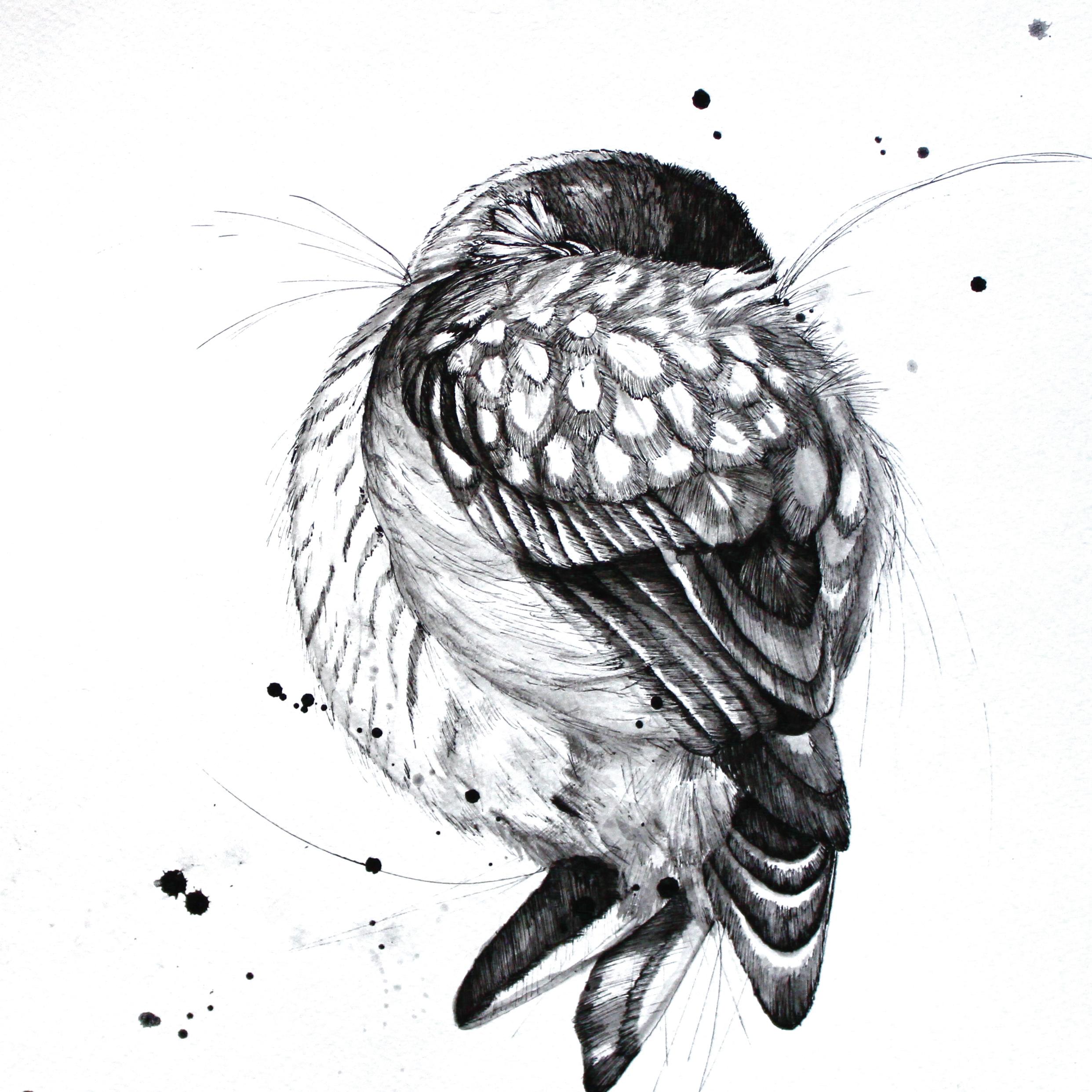 Sleepy Bird 3