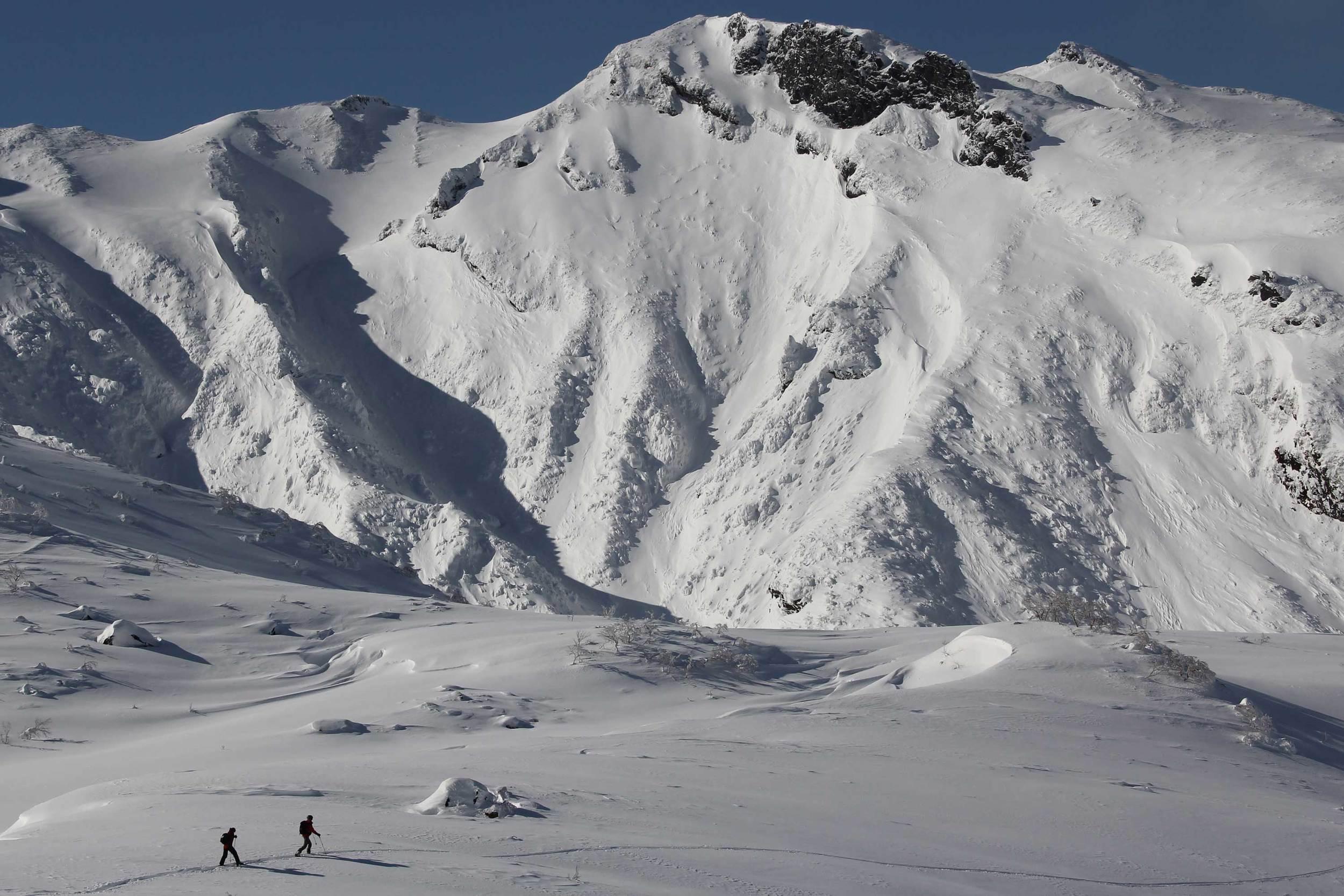 Backcountry Skiing Tokachi
