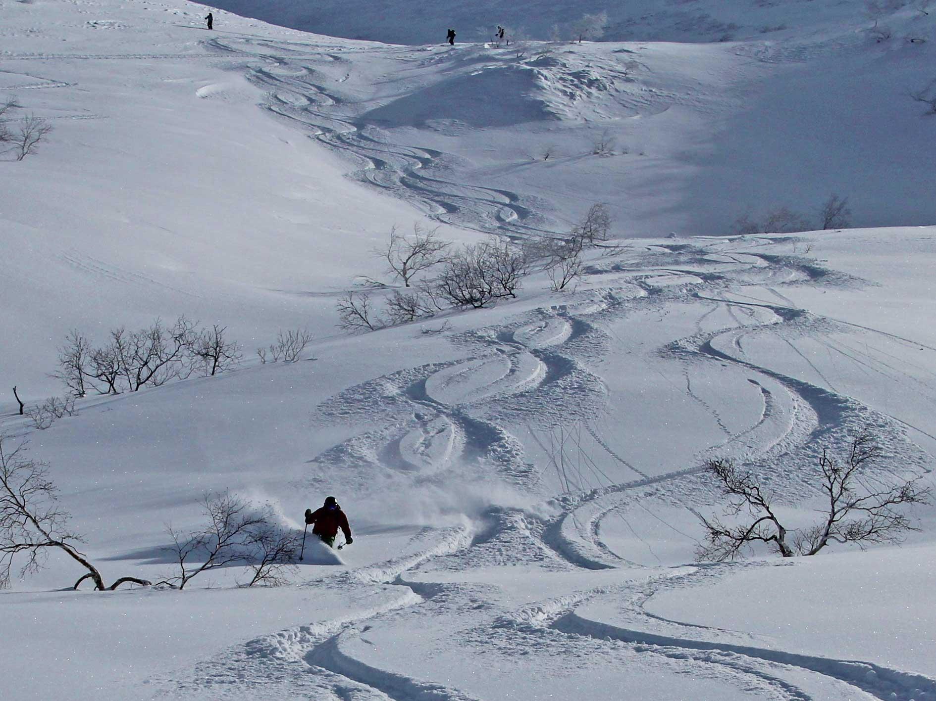 Sanpo Valley Powder Tracks, Tokachi Mountains