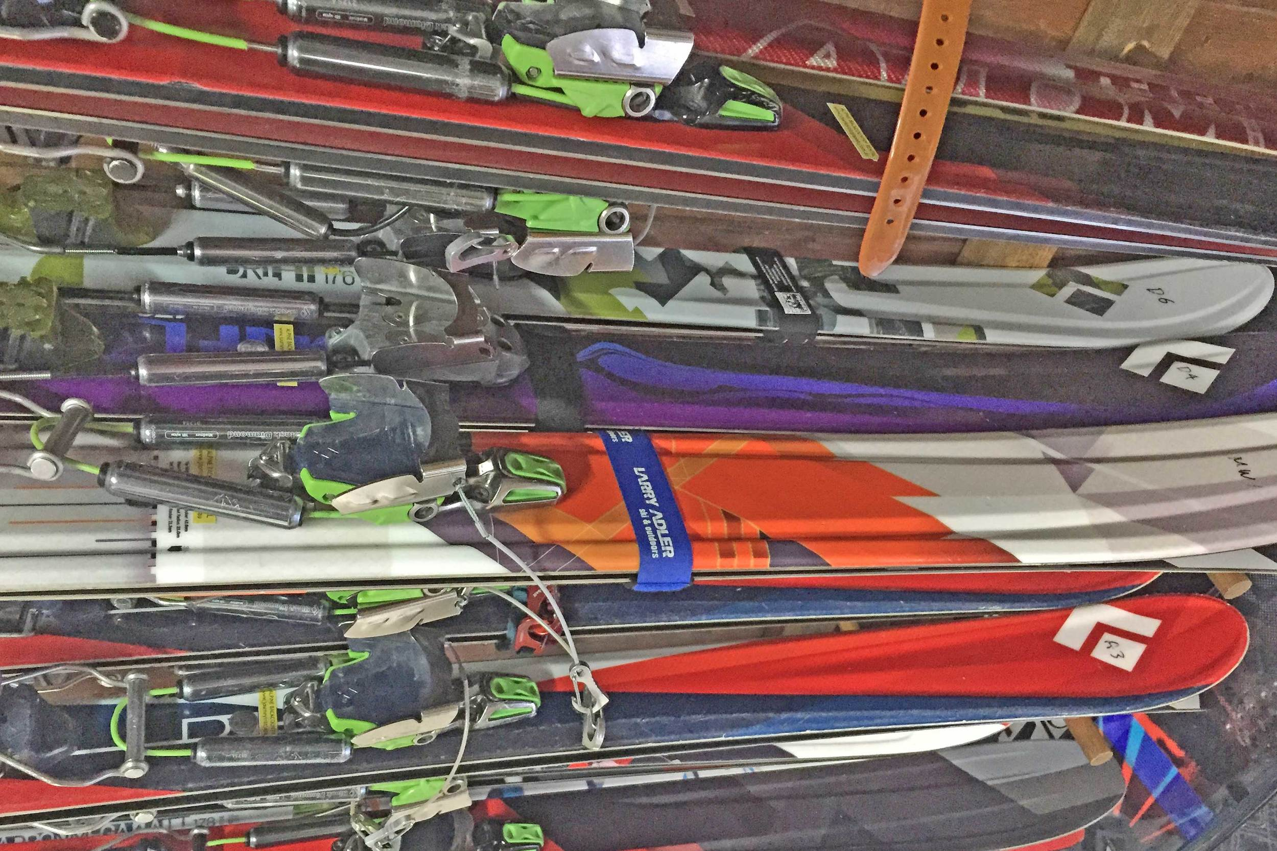 Black Diamond Telemark Skis