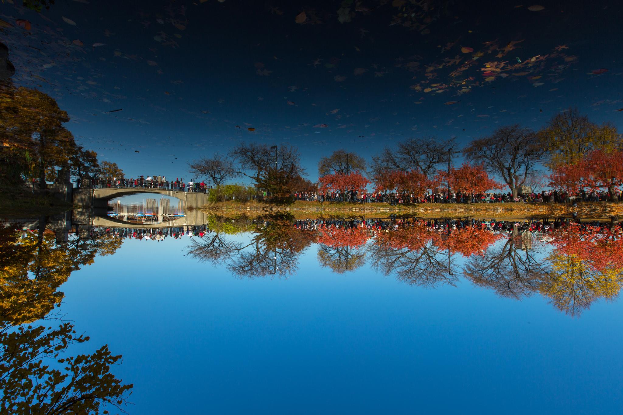reflect.jpg