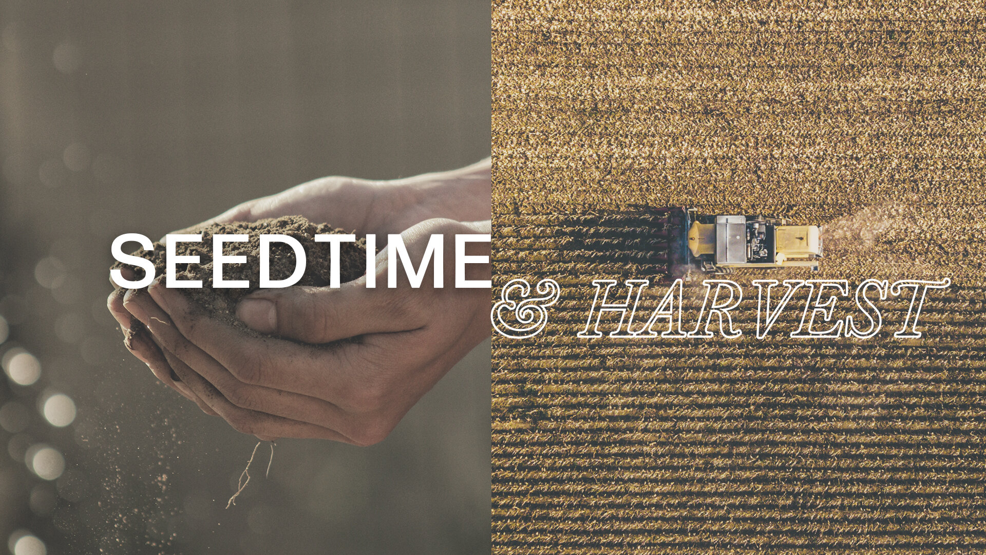 Seedtime and Harvest Graphic.jpg