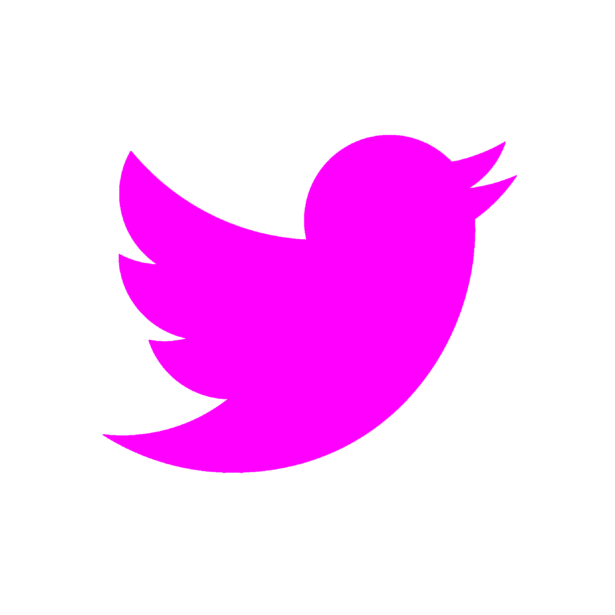DTWS TWITTER