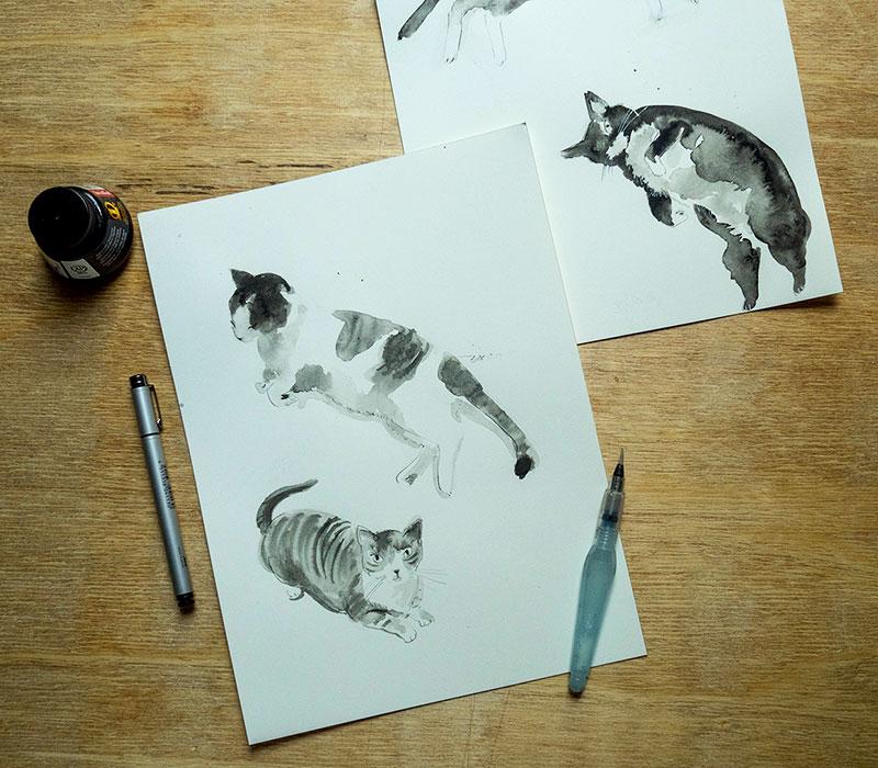 cats Melissa Iwai 2018