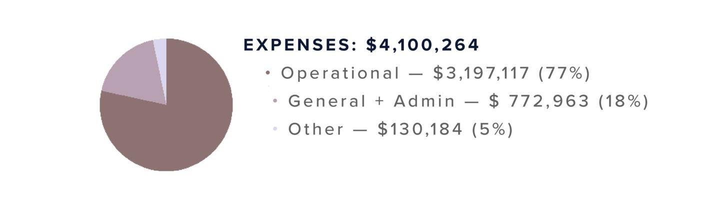 expense+chart.jpg