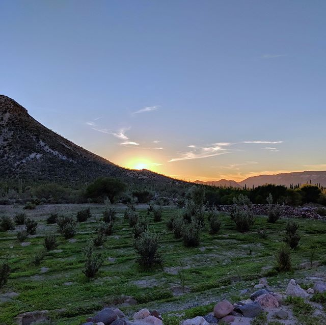 Sunset over farmland established over 300 years ago.  #baja #bajacalifornia #mexico #optoutside #neverstopexploring #misionsanborja #missionsanborja #history #missionaries #jesuitmission
