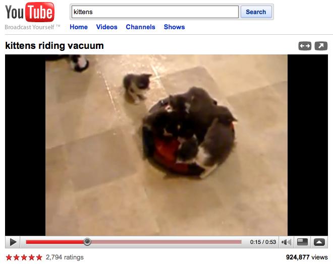 Kittens, riding a vacuum.