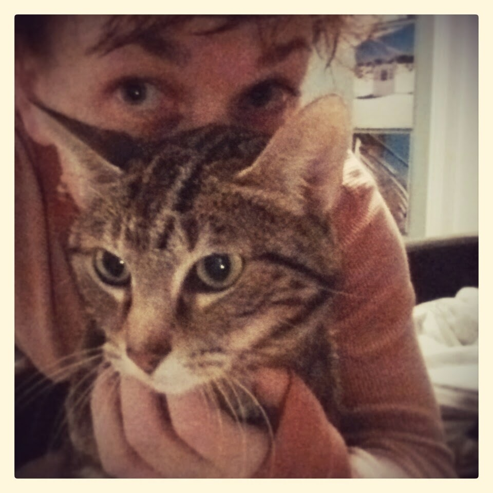 Love you always, little Echo Cat.