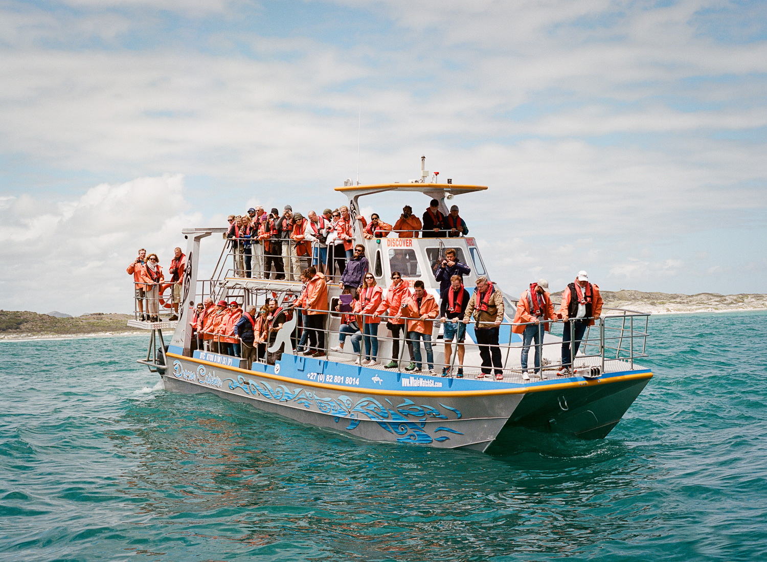 This is the boat for high IQ people who don't muck around with wetsuits and underwater cages. They came to watch our expert chummer work his magic.