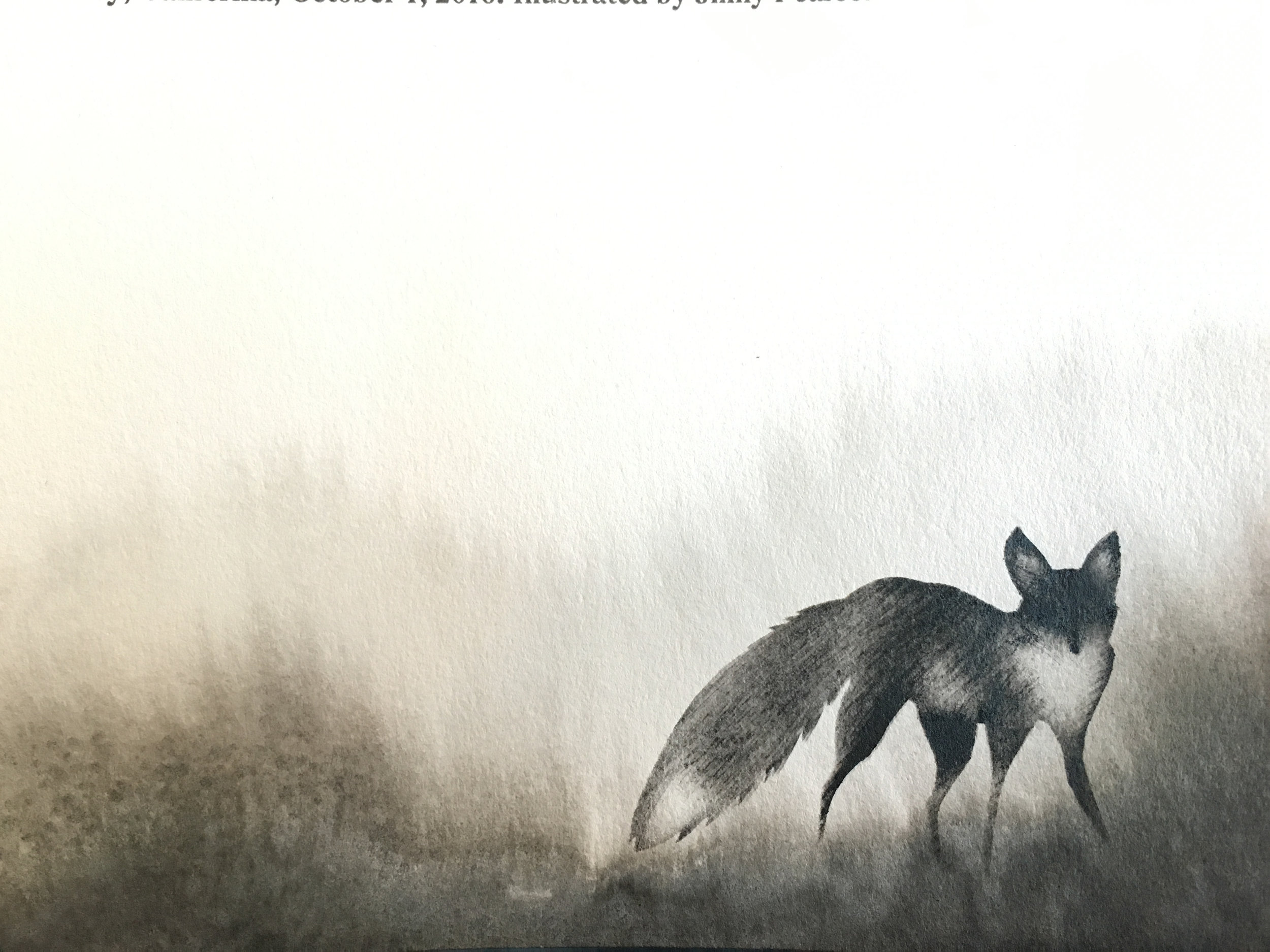 fox-detail.jpg