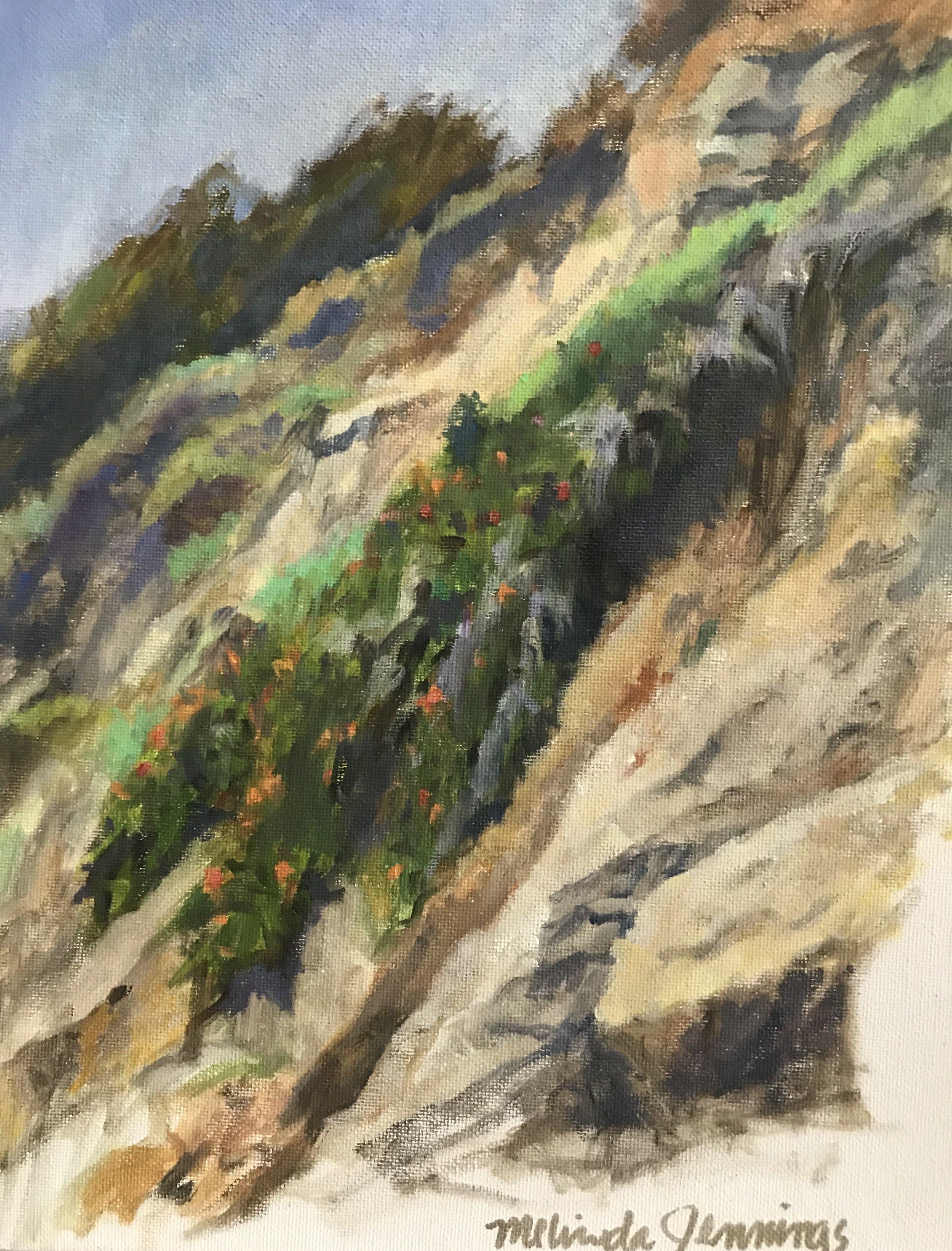 Del Mar Cliff South