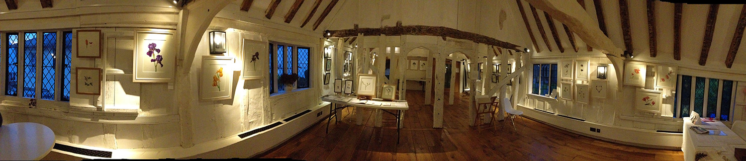 A panoramic view of the Guildroom set up for a  botanical painting exhibition using our hanging system
